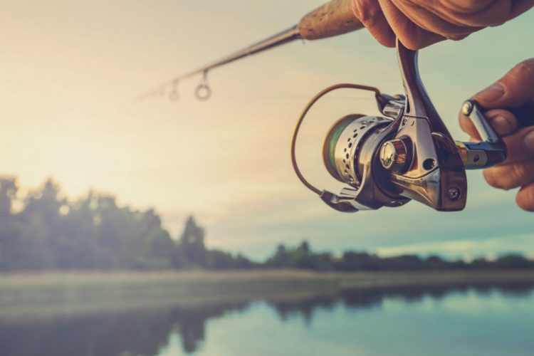 Best Fishing Reels for Beginners on a Budget