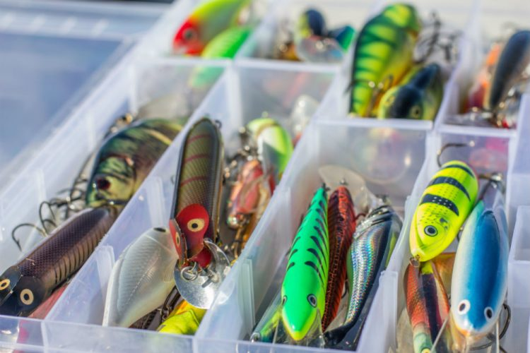 Best Fishing Lures: Finding the Right Set for You