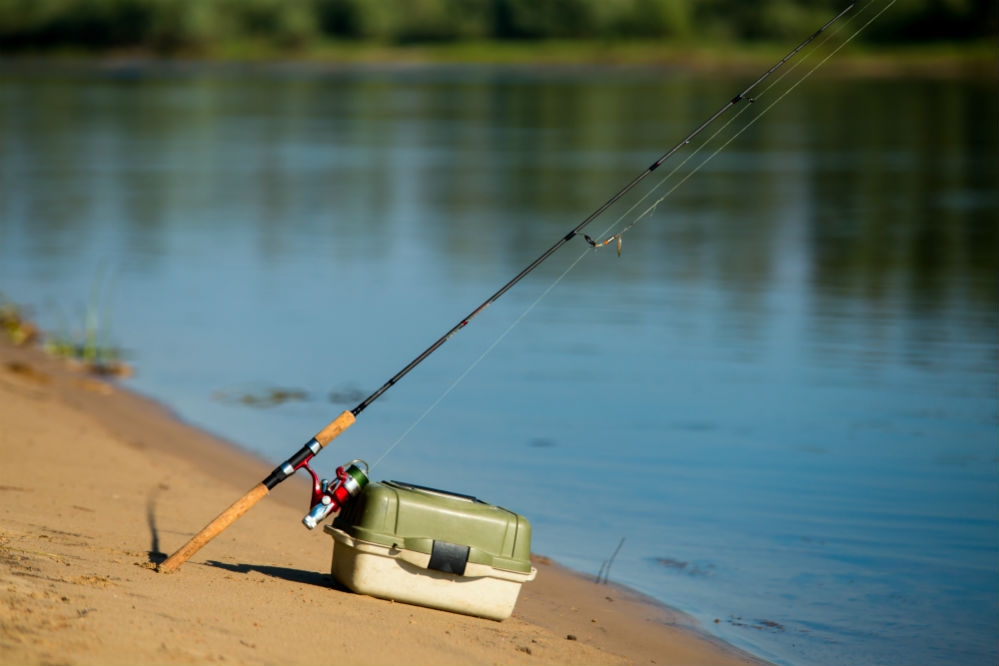 Best Fishing Tackle Box: Keeping Your Gear Organized