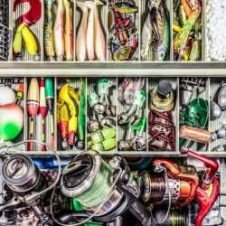 How to Organize Your Tackle Box?