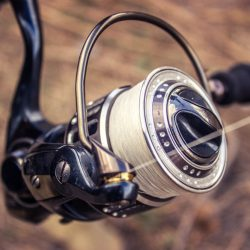 Best Fishing Reels: Quality and Functionality in One