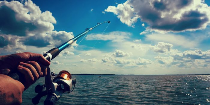 The Best Saltwater Spinning Reels